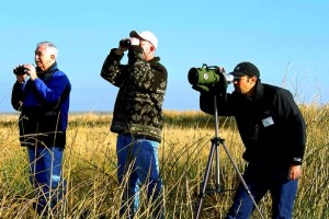 Grup de birdwatcheri